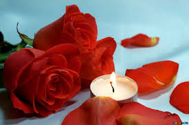 Rose Petals and Candle